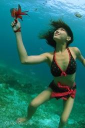 Mick Gleissner - Floral Reef