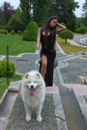 Marco Quaraniello - Dog , Samoyed , Model , sexy, tattoo,