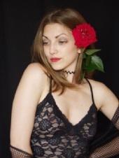 Montazh - Ashley's Rose