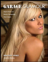 Holley - Garage Glamour Book Cover