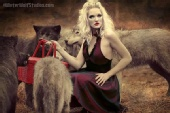 Jennifer Kristina - The wolves of little red