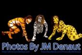 Photos By JM Denaut