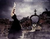 Aria Braham - dance with wolf