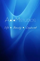 Allen Moore/AIMStudios - AIMStudios