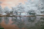 Backstreet Photography - Infrared ~ shot in JULY